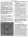 Ghostbusters RPG Lurid Tales of Doom Page 41.jpg